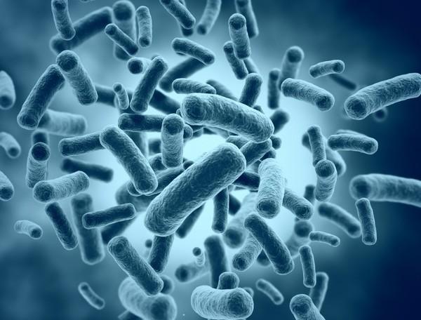 microb